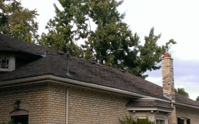 Your Roof: Does it Need Repair or Replacement?